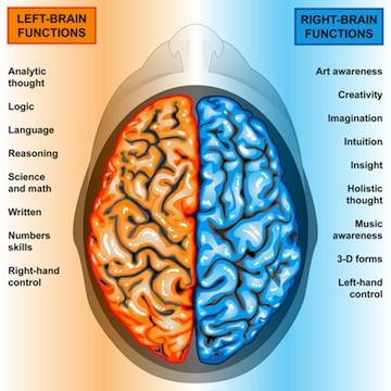 brain-chicago-academic-1
