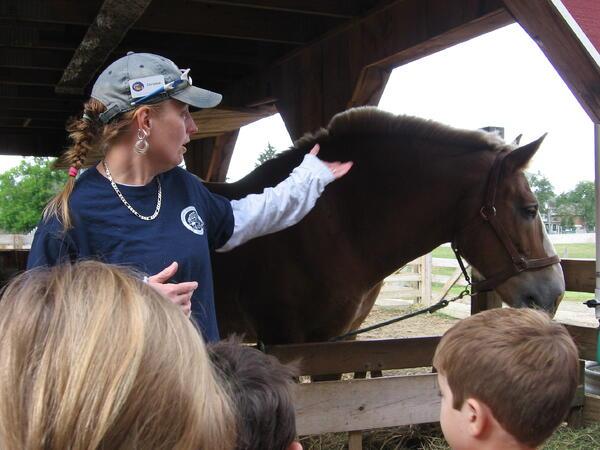 horse-chicagoacademic